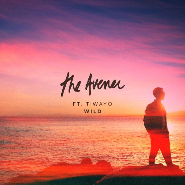 The Avener, Tiwayo - Wild (The Avener Rework)